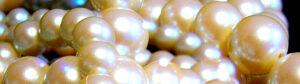 Pearls - Birthstone of June